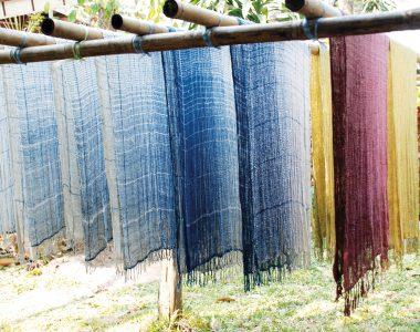 Seven shades of indigo