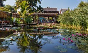 The Taste of Tradition: Manda de Laos