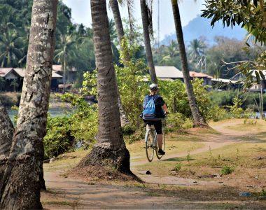 The Secret Lives of Islands